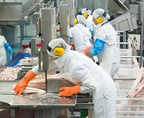 corte de pescado en galicia
